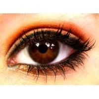 Зрение (4)